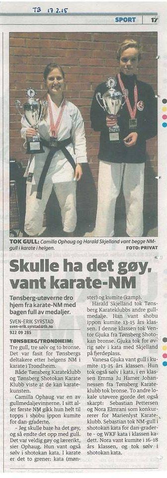 Artikkel i Tønsberg blad